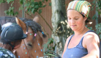 "Pony Maxi Kurs freitags ""Ponyversteher"""