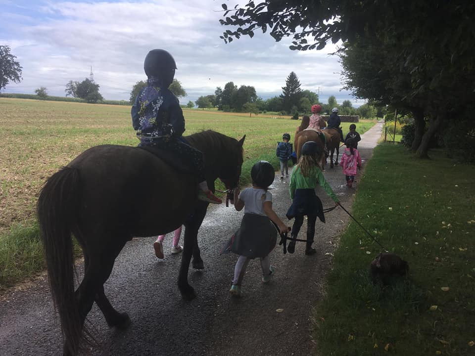 Ausflug mit Ponys