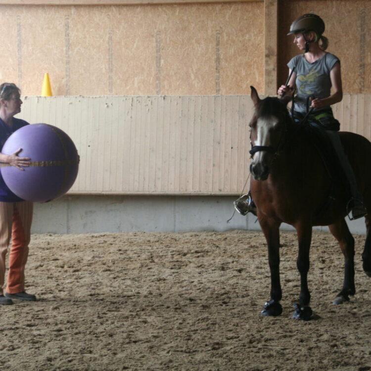 Centered Riding - Centered Riding UPDATE und Ausbilder Kurs Teil ZWEI