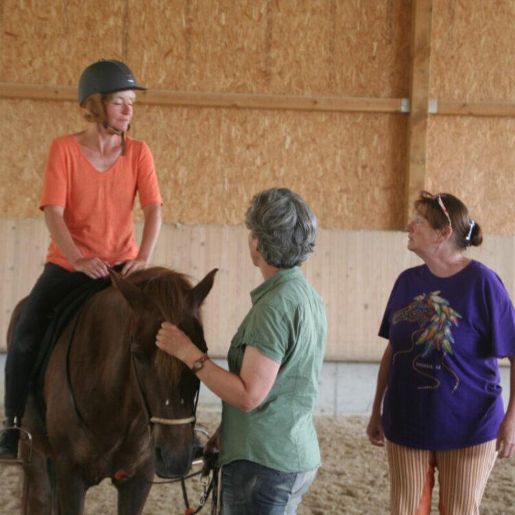 Centered Riding - Centered Riding Ausbilder Kurs Teil EINS und Open Clinic